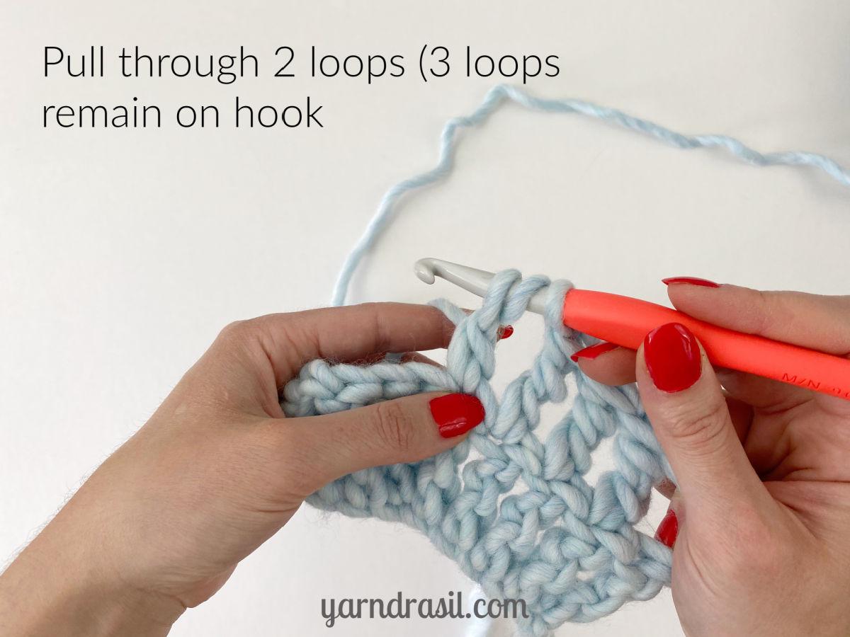 Pull through 2 loops (3 loops remain on hook)